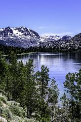 June Lake  (Vert) (joe Lach) Tags: junelake junelakeloop hwy158 monocounty leevining snowcapped mountains trees pinetrees alpine lake inyonationalforest sierranevada california vertical joelach