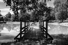 Summer theme (Petr Horak) Tags: grass 28mm x100f wclx100 bohemia monochrome waterfront bridge water fuji blackandwhite pond bw foliage arboriculture bank cep jihočeskýkraj czechia cze