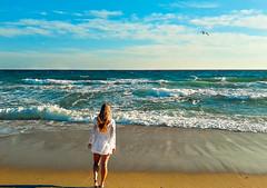 Haulover Beach coincidences. (Aglez the city guy ☺) Tags: miamibeach hauloverbeach haulover seashore sobe seagull waterways woman seascape sea blue beach beachscape waves outdoors exploration urban urbanexploration