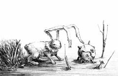 Explorer (Marcos Telias) Tags: illustration drawing draw dreams dibujo dibujos digital rabbit hare scifi ballpoint lápiz fantasy
