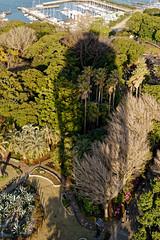江ノ島シーキャンドル LIGHTHOUSE (SHIBATA KEN) Tags: japan 日本 enoshima 江ノ島 シーキャンドル lighthouse 灯台 tower 展望タワー shadow 影