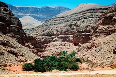 IMG_0899 (ahmed_Maher) Tags: egypt hurghada elgouna egyptian roadtrip mountain hills rocks nature desert wild documentary thisisegypt