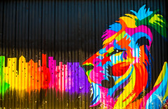 Jamaica the Artist (Thomas Hawk) Tags: america americansteel california eastbay jamaicatheartist oakland usa unitedstates unitedstatesofamerica westcoast westoakland graffiti lion us fav10 fav25 fav50
