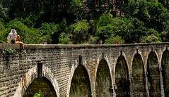 DSC_2921-1 (Mahesha Wijerathna) Tags: srilanka ella demodara ninearches bridge architecture railway heritage tourism nikon 35mm