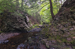Lepper Brook & Cliffs of Stone (TheNovaScotian1991) Tags: victoriapark colchestercounty truro novascotia canada cliffs stone rocks boulders mossyrocks lichen lepperbrook nikond3200 tokina1116mmdxii ultrawideangle polarized trees forest reflection woods landscape
