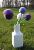 Pompom flowers (I) (dididumm) Tags: pompom wool upcycling crafting handarbeit wolle bommel pompon