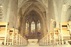 DSC00732 (Carmelo DG) Tags: etain eglises meuse grandest lorraine gothique vitraux sculture orgues nef chapelle piéta ligierrichier
