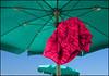 Sotto l'ombrellone. (Maulamb) Tags: ombrellone