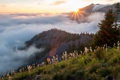 Sunburst and cloud waterfall (Laura Jacobsen) Tags: alpinelakeswilderness bandera banderamountain hiking i90 iraspringtrail littlebandera mountains sunset trails washington wildflowers
