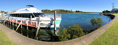 Forster's Whale Watching Cruise Boat, The Amaroo Moored in Breckenridge Channel, Forster, NSW (Black Diamond Images) Tags: forster whalewatchingboat whalewatching cruiseboat amaroo breckenridgechannel forsternsw midnorthcoast nsw australia milesisland wallislake landscape coast iphone appleiphone7plus iphone7plus panorama appleiphone7pluspanorama iphone7pluspanorama iphonepanorama blackdiamondimagescollection