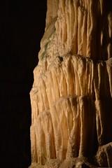 sDSC_4233 (L.Karnas) Tags: slowenien slovenia slovenija sommer summer juli july 2017 postojna cave postojnska jama grotte di postumia höhlen von pivka river inner carniola notranjska littoral