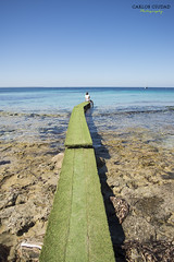 Woman sitting on green jetty at Salinas Beach, Ibiza, Spain (Carlos Ciudad - Portrait Photography) Tags: mujer woman sola alone soledad loneliness tristeza sadness camino path pasarela footbridge gangway verde green azul blue turquesa turquoise barco bote boat velero sailingboat playa beach costa coast vertical colores colors cielo sky mar mediterraneo mediterranean sea ibiza islas baleares balearicislands españa spain europa europe cctrilla nikon d610