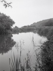 soft day: River Thames (OhDark30) Tags: olympus 35rc 35 rc film 35mm monochrome bw blackandwhite bwfp fomapan 200 rodinal river thames path reflection still calm reflections mirror misty drizzle soft day banks tree reeds swinford