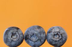 Blueberries Three on Orange (KellarW) Tags: threeblueberries 3 colorful blueberriesthree trio bright onorange brightandcolorful trey macromonday orangeandblue three macromondays blueandorange macro