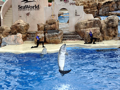 Sea World San Diego-50 (N i c o_) Tags: nlopedebarrios ca d90 eeuu nikon nikond90 sandiego usa unitedstatesofamerica california travel turismo vacaciones vacation viaje estadosunidosdeamerica seaworld sea world park estadosunidosdeamérica
