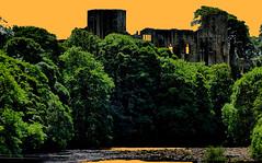 Barnard Castle River Tees Castle gold (tina negus) Tags: barnard castle river tees gold teesdale durham