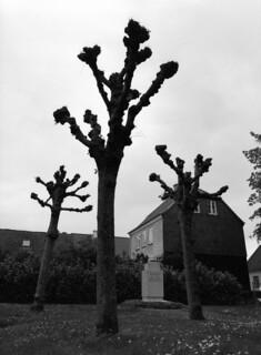 Kloster Kirkegård, Haderslev