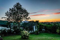 Mourne Sunrise (Jeremy Gadd) Tags: ulster mourne mountains perfectsunsetssunrisesandskys sunrise garden
