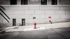 Hydrant (BeyondThePrism) Tags: fire firehydrant hydrant color simple minimalist minimal street angle tilt slope road roadside red bland shadow vignette vignetting centered symmetry symmetric simplicity beyondtheprism beyond prism wwwbeyondtheprismcom castonguay castonguayjeanphilippe jpcastonguay jpc montreal oldmontreal quebec canada