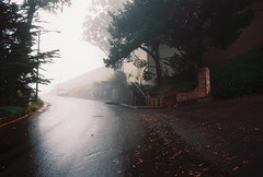 One morning (Robert Ogilvie) Tags: foundinsf fog sanfrancisco gwsf contaxs2