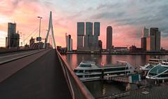 Rotterdam 15-07-2017-4 (Pure Natural Ingredients) Tags: rotterdam sunrise zonsopgang erasmusbrug erasmusbridge glow skyline orange blue