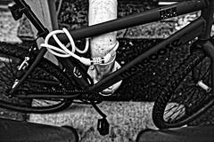 Mongoose (brev99) Tags: d610 sigma2414 art bradyartsdistrict bullinthealley dxofilmpack5 blackandwhite bicycle lock tulsa agfa25 filmanalog ononesoftware on1photoraw2017