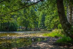 Vrelo Bosne (Todorovic Srecko) Tags: vrelo bosne sarajevo bosnia landscape priroda izvor bosna ngc