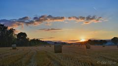 JUI_9817 (Bob_Reinert) Tags: soleil sun sunset nuages clouds coucher paysages landscape paille bottes