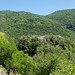 """2017_07_15-29_Mazan_Provence-337 • <a style=""""font-size:0.8em;"""" href=""""http://www.flickr.com/photos/100070713@N08/35895774450/"""" target=""""_blank"""">View on Flickr</a>"""