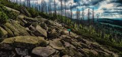 An ocean consisting of rocks (ramerk_de) Tags: bavarianforest bayerischerwald niederbayern hdr clouds rockformation naturalpreserve naturdenkmal