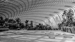 Flower Dome, Garden by the Bay, Singapore (Art-G) Tags: bw monochrome blackandwhite flowerdome gardenbythebay singapore canon hdr photomatix eos20d efs1018isstm