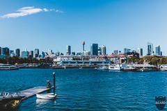 20170723_0008.jpg (thedangerbeard) Tags: sydney newsouthwales australia