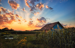 back roads home (cherryspicks (on/off)) Tags: landscape sunset croatia zagreb rural field countryside light rays clouds sky summer cornfield