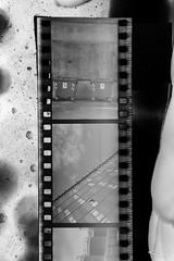 01 (andrea.fogliacco) Tags: film pellicola ilford fp4 plus sviluppo rullini vintage black white develop developed reflex old school vecchia scuola
