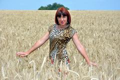 DCS_3872_00061 (dmitriy1968) Tags: portrait портрет nature природа erotic sexsual эротично beautiful girl wife люди people evening придонье девушка отдых путешествия outdoor секси пшеница wheat солнечный день sunny day