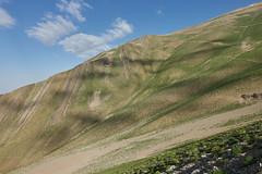 Lovely Green (Vinchel) Tags: iran tehran outdoor mountain trekking trail landscape sony rx100mv green