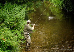198/365 The Catch (andrew.varney) Tags: man candid hobby 365 outdoors riverwey river outside outdoor nikon d5100 fishing farnham surrey countryside pastimes