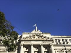 Building the economy (Matt Aresti) Tags: buenosaires argentina ar facultad de economia uba urban once recoleta medicina birds aves bandera flag