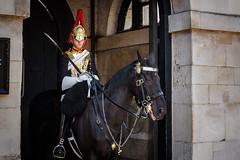 Wache vor Horse Guards, London (J. Achrainer) Tags: canoneos6d ef2470mmf4lisusm london staedteundorte horseguards wache pferd