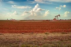 Wildcattin' (Corporate Traveler) Tags: lamesa texas crude oil prospecting prospector westtexas oilpatch llanoestacado dawsoncounty pumpjack
