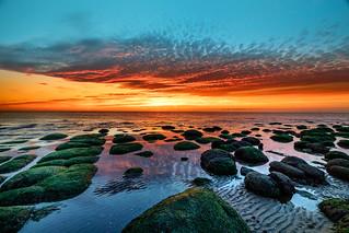 Hunstanton sunset with seaweed rocks in foreground, Norfolk, UK (1)