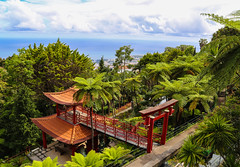 2017 SPM1723 Jardim Tropical Monte Palace (Monte Palace Tropical Garden) in Funchal, Madeira, Portugal (teckman) Tags: 2017 botanicalgardens funchal jardimtropicalmontepalace madeira portugal pt