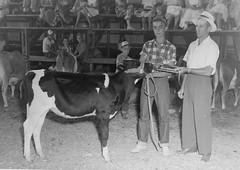 1127 (kentuckyffa) Tags: sae 55 junior grand champion holstein somerset dairy show albany clinton county ffa kentucky cattle club president stanford