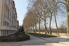Sycamores along Loire River (Kurtsview) Tags: france tours sycamore trees city park architecture loire
