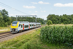 NMBS AM 08505  Bouwel (Tren di Cédrico) Tags: l15 bouwel desiro ml siemens antwerpen nmbs sncb emu train trein