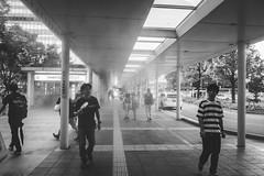 Water mist for cooling (yoshi_2012) Tags: streetphotography スナップ 富士フイルム fujifilm fujixseries back alley backstreet 路地裏 裏路地 travelphotography 博多駅 福岡 fukuoka hakata