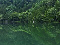 長野 大町 中綱湖 (jcyeh0396) Tags: gfx50s 3264mm 長野 中綱湖 倒影