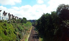 Express (Frantastic.) Tags: brighton england landscape paisaje inglaterra uk europa railways train rail railway vía tunnel tunel tree trees verano summer houses house cas casa cielo sky nube cloud azul blue skies tren houseq