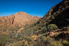 Larapinta Trail Day 1-5
