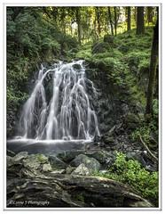 Tom Gill Falls (Lynne J Photography) Tags: cumbria lakedistricy kellyhalltarn sunrise nikon tarn reflection sunset lonetree lone tree waterfalls longexposure tomgillfalls